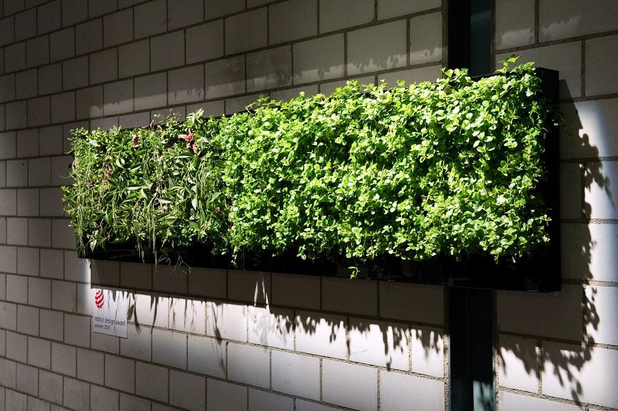 Xcellent Plug® - Vertical Green / Green Wall